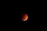 Blood Moon-406
