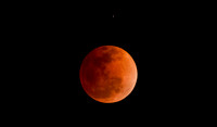 Blood Moon-402-2