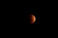 Blood Moon-403