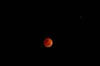 Blood Moon-405